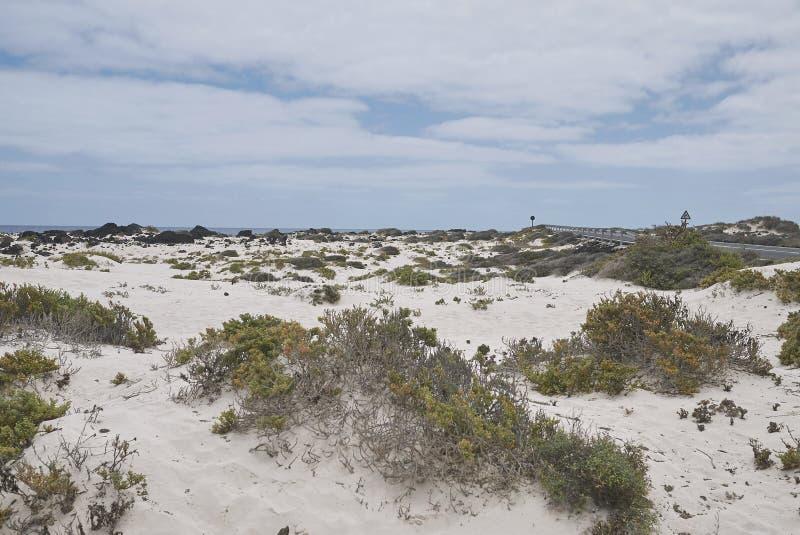 Ansicht der weißen Sande von Caleta de Mojon Blanco lizenzfreie stockbilder