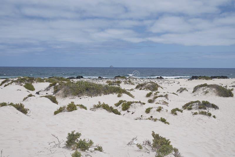 Ansicht der weißen Sande von Caleta de Mojon Blanco stockfoto