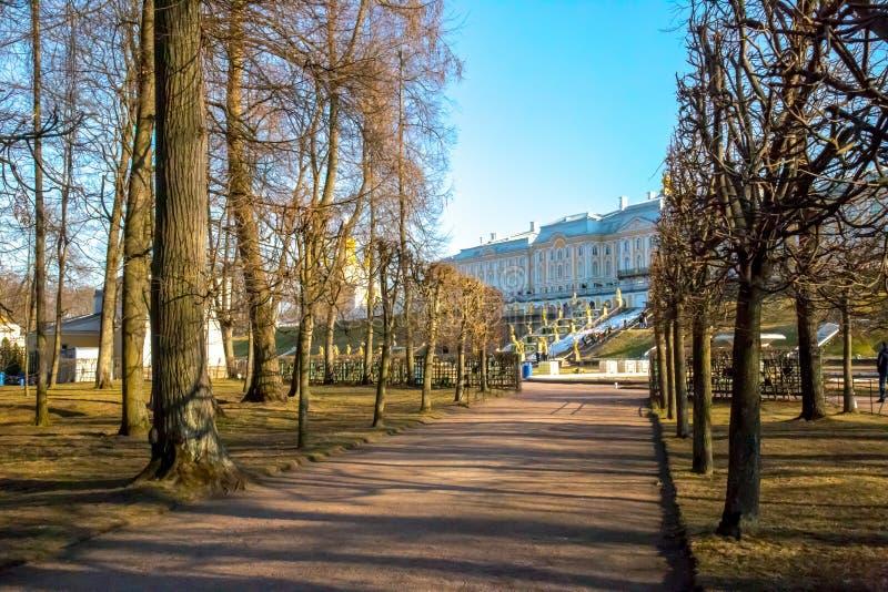 Ansicht der zentralen Seite der Museumsbrunnen, Peterhof St Petersburg, Russland stockbild