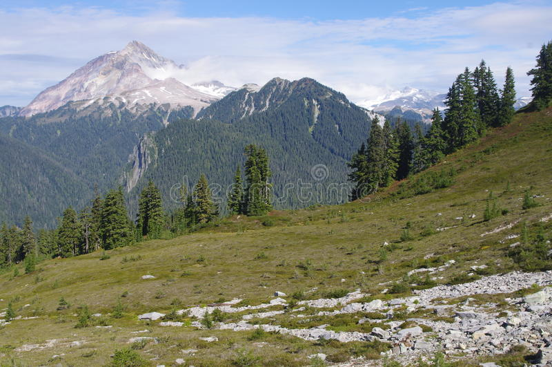 Ansicht des Bergs Garibaldi lizenzfreies stockfoto