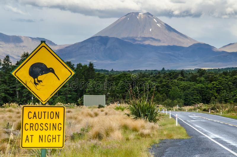 Ansicht des Bergs Ngauruhoe - Berg-Schicksal von der Straße in Nationalpark Tongariro mit Kiwivorsichtüberfahrt am Nachtzeichen h stockbild