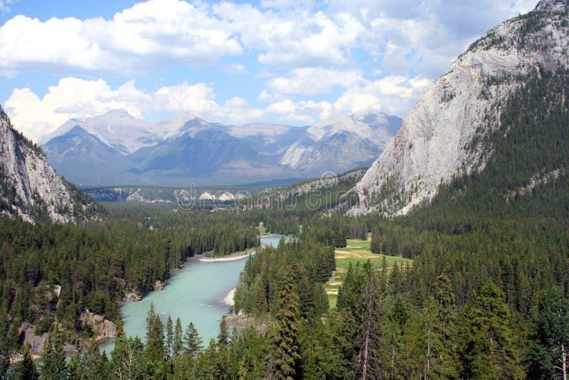 Ansicht des Bogen-Flusses und der kanadischen Rockies stockfotografie