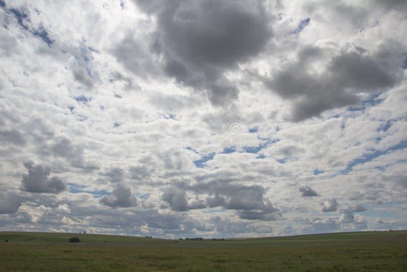 Ansicht des Feldes unter dem blauen Himmel und den weißen Wolken stockfoto