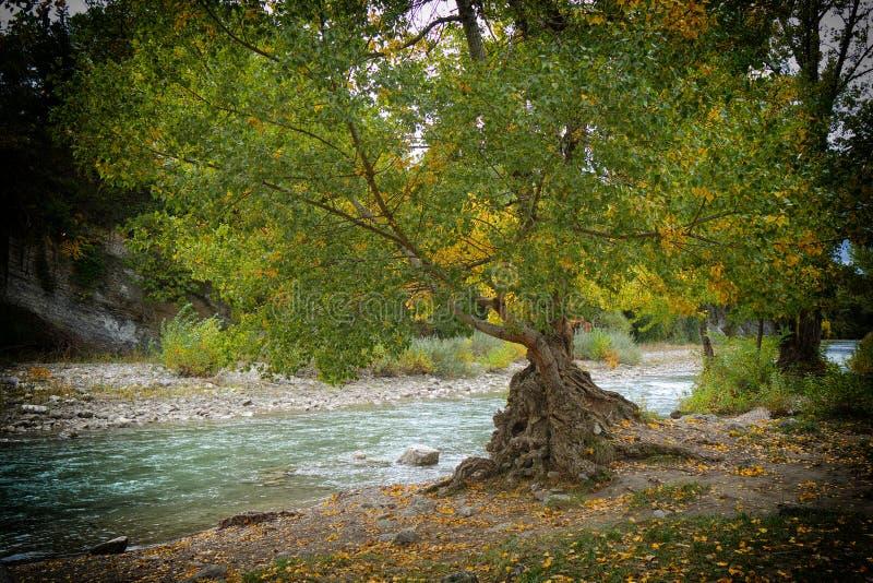 Ansicht des Flusses Drome im Herbst, Frankreich lizenzfreie stockbilder