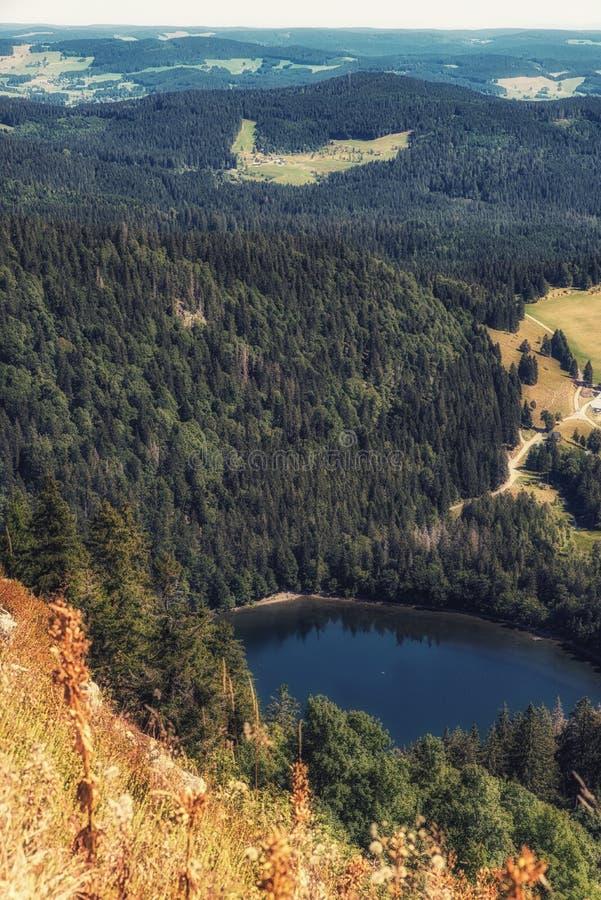 Ansicht des Gebirgssees Feldsee Schwarzer Wald Deutschland stockfotos