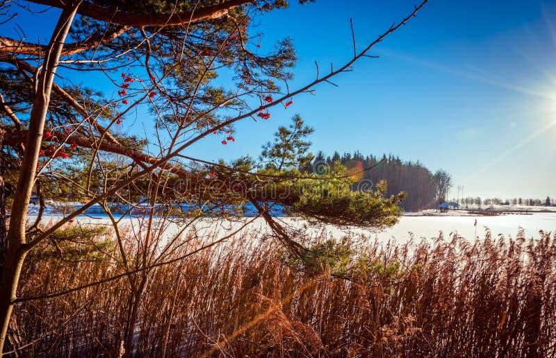 Ansicht des gefrorenen Sees lizenzfreie stockfotografie