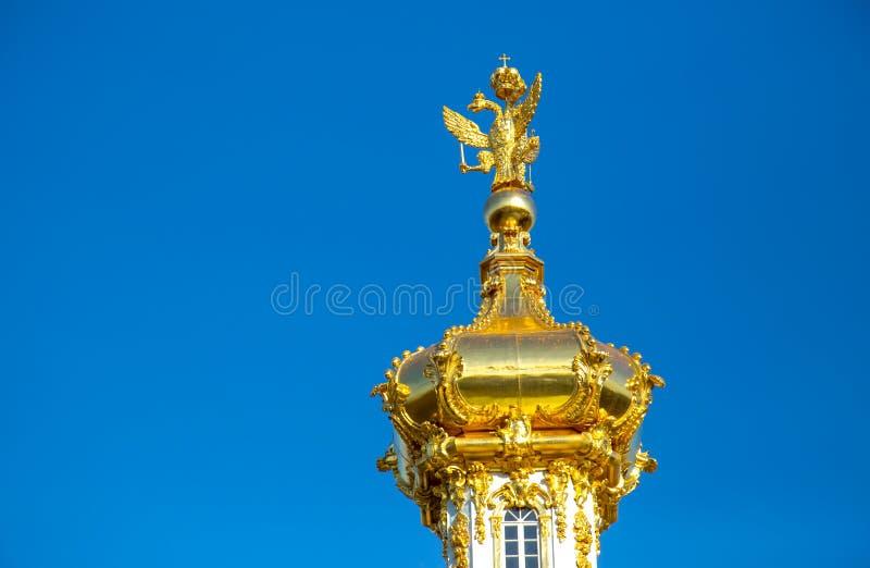 Ansicht des Golden Domes der orthodoxen Kirche mit zwei-köpfigen Adlern, Peterhof-Museum St Peter lizenzfreie stockfotos