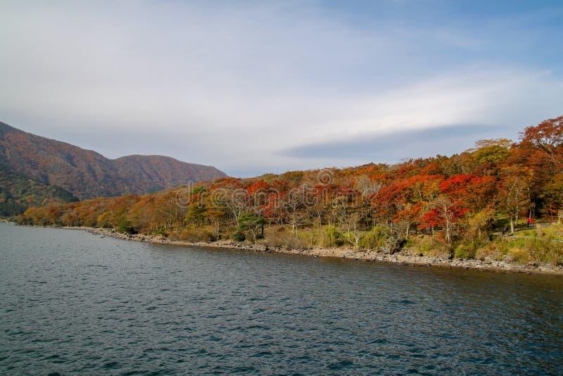 Ansicht des Landschafts-Gebirgs- und Wald-Chang-Farbblattes am See Ashi in der Herbstsaison Japan lizenzfreie stockbilder
