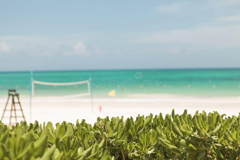 Ansicht des maroma Strandes in Mexiko stockbild