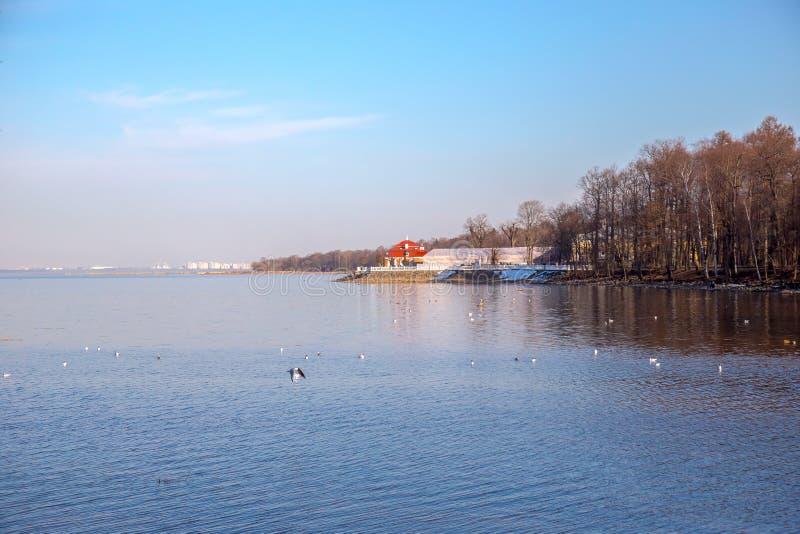 Ansicht des Monplaisir-Palastes vom Wasser im Peterhof-Museum St Petersburg, Russland stockbild