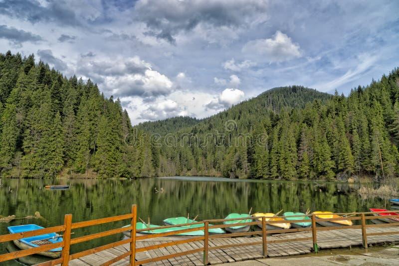 Ansicht des roten Sees Rumänien lizenzfreie stockfotografie