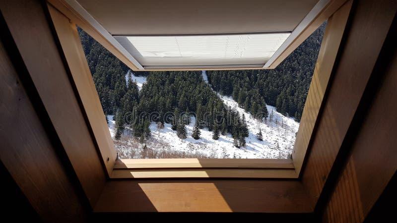 Ansicht des Schnees umfasste Landschaft lizenzfreies stockbild