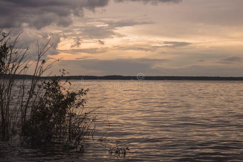 Ansicht des schwarzen Flusses in Amazonas, Brasilien stockfotos