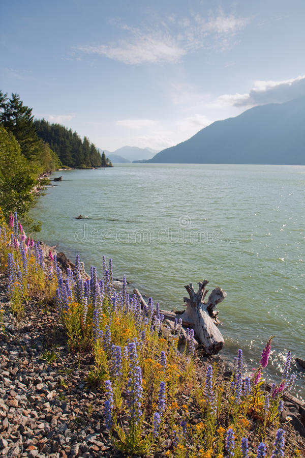 Ansicht des Squamish Flusses im Britisch-Columbia lizenzfreies stockfoto
