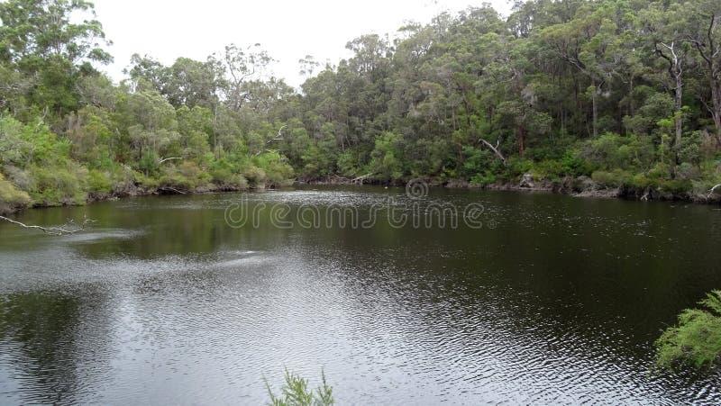 Ansicht des Walpole-Flusses West-Australien im Herbst stockfotos