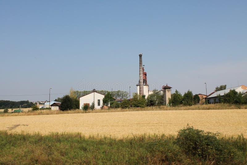 Ansicht des Weizenfeldes und des Aufzugs im tschechischen Hinterland lizenzfreie stockfotografie