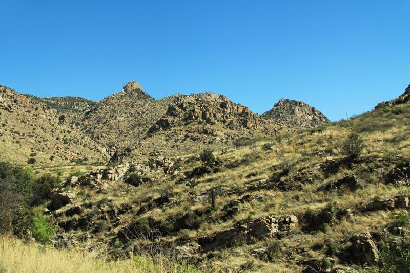 Ansicht, die herauf Berg Lemmon in Tucson Arizona fährt lizenzfreie stockbilder