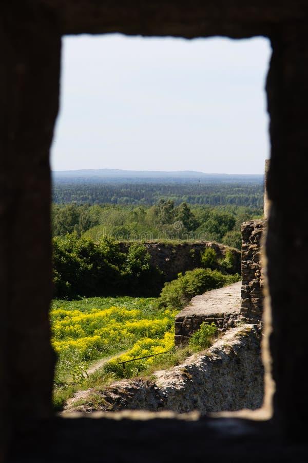 Ansicht durch das Fenster in der Wand einer ruinierten Steinfestung Koporye stockfoto