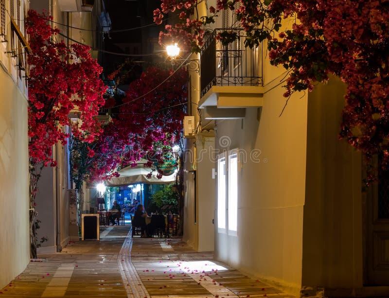 Ansicht einer Straße und des Cafés in Nafplio, Griechenland, nachts verzierte Blumen und Reben lizenzfreie stockfotos