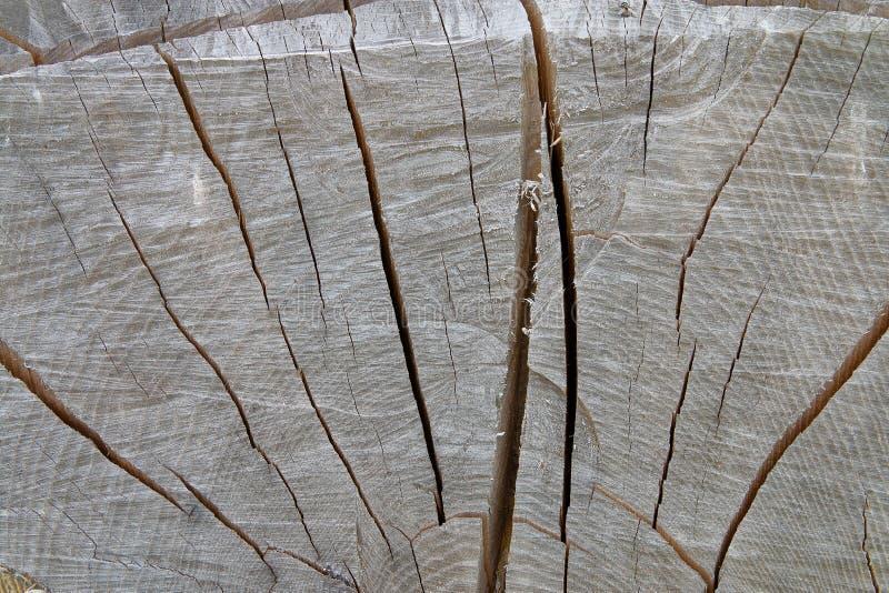 Ansicht eines alten hölzernen Klotzes lizenzfreies stockbild