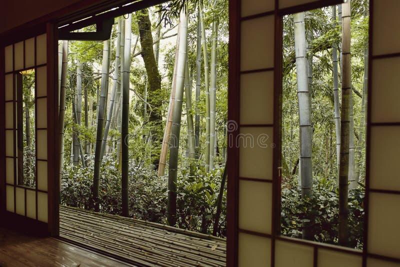 Ansicht eines japanischen Waldes stockbild