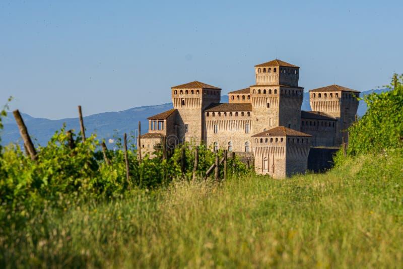 Ansicht eines Schlosses von einem Weinberg auf den italienischen Hügeln lizenzfreie stockfotos