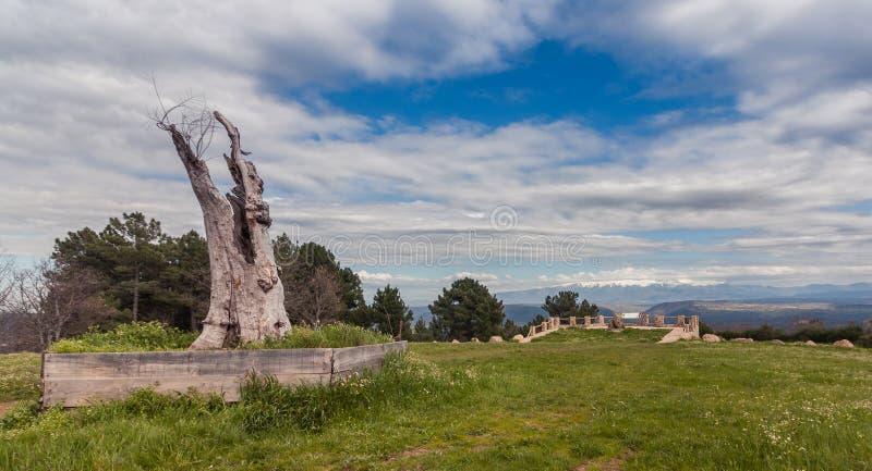 Ansicht eines Steinkreuzes und des Stammes lizenzfreies stockbild
