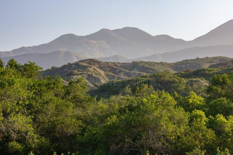 Ansicht in O 'Neill Regional Park stockbilder
