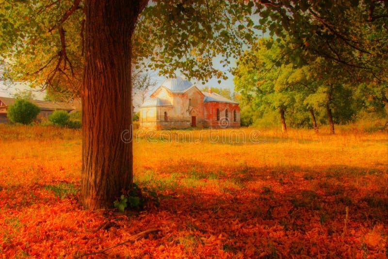 Ansicht vom Baum auf Kirche lizenzfreie stockfotos