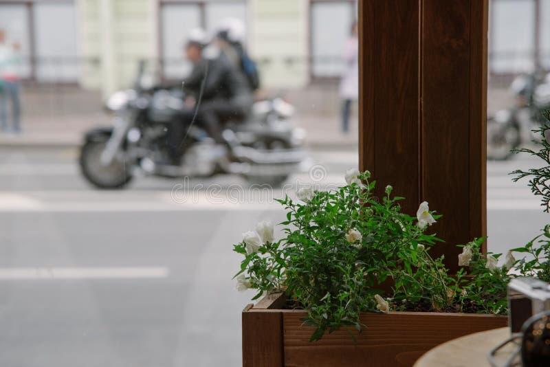 Ansicht vom Caféfenster stockbilder