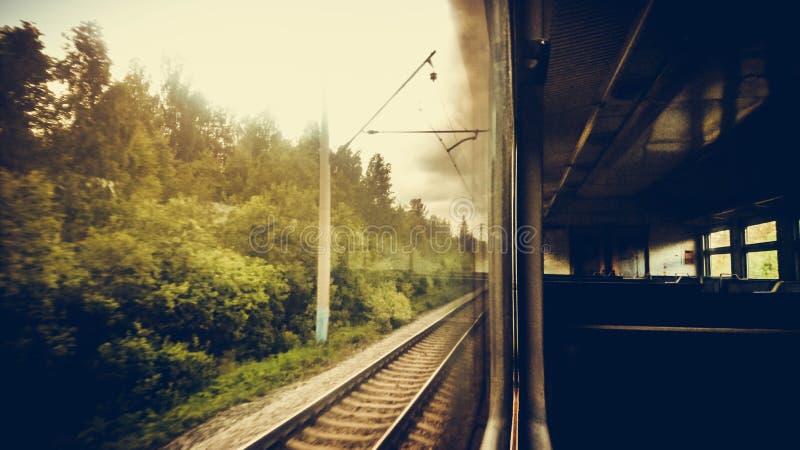 Ansicht vom Fenster der Zugnaturbäume gestalten landschaftlich lizenzfreie stockfotografie