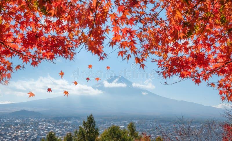 Ansicht vom Fujisan über Stadt mit Rotahornabdeckung stockfotografie