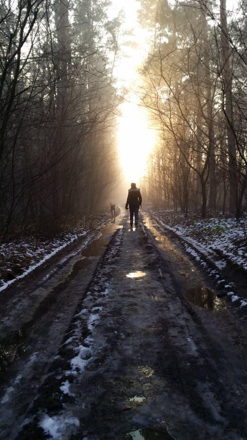 Ansicht vom Moloda Berg, Ukraine lizenzfreies stockfoto