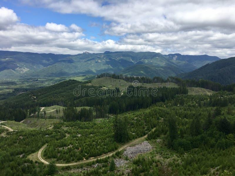 Ansicht vom oben genannten Schauen auf einen staatlichen Wald stockfoto