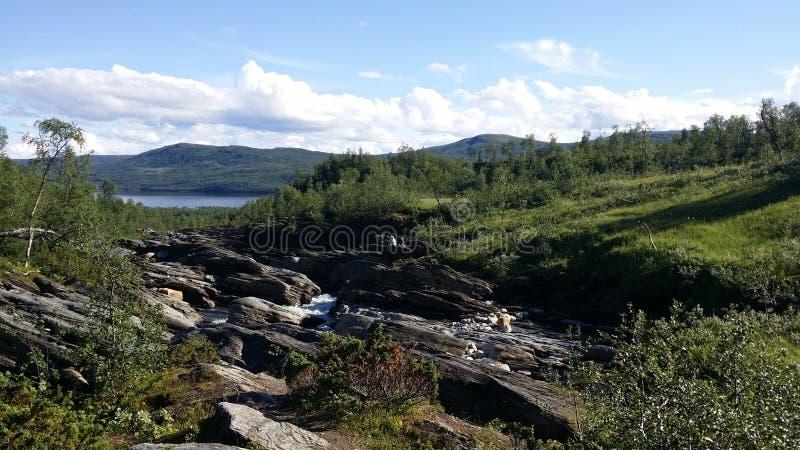 Ansicht vom schwedischen mountainstream, Ruttjebäcken stockfoto