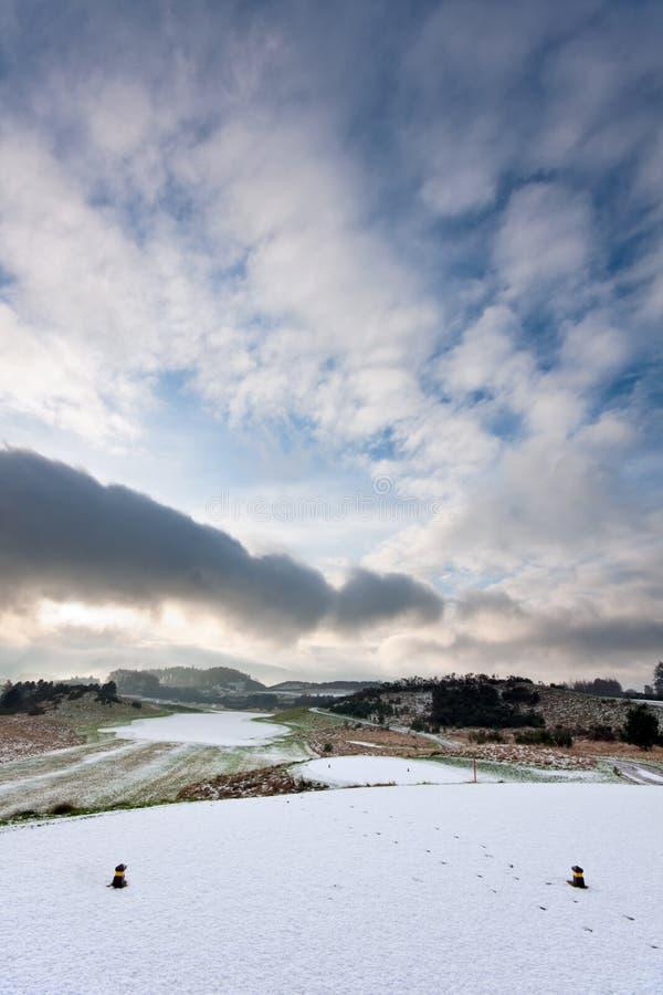 Ansicht vom T-Stück auf einem schneebedeckten Golfplatz im Winter stockbilder