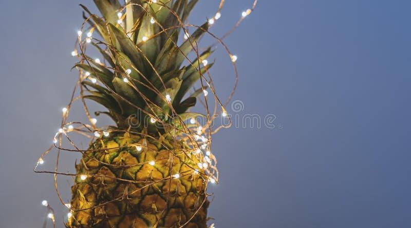 Ansicht von Ananas mit Weihnachtslicht stockfotografie