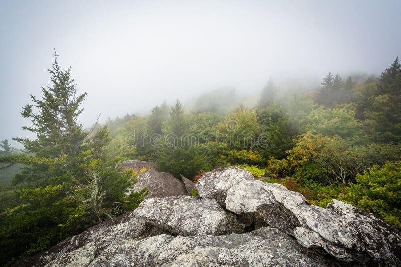 Ansicht von Bäumen im Nebel vom schwarzen Felsen, am großväterlichen Berg, i stockbild