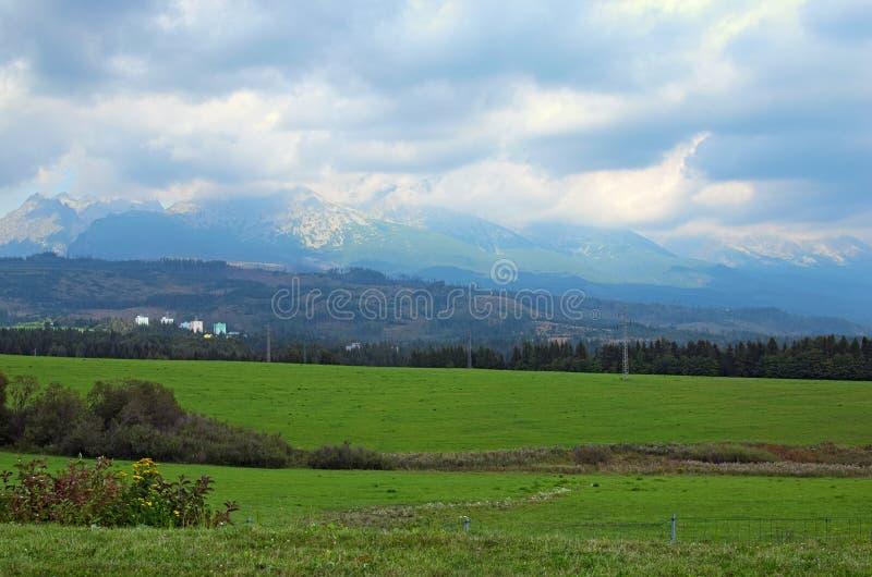 Ansicht von Bergspitzen und von grüner Wiese in der Sommerlandschaft von Tatra-Bergen, Slowakei lizenzfreies stockfoto
