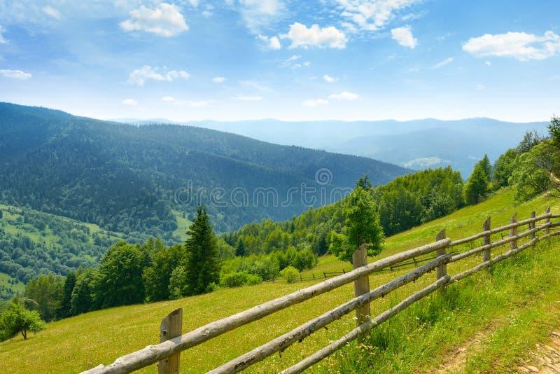 Ansicht von Bergwiesen und von blauem Himmel auf Ukrainisch Karpaten lizenzfreies stockfoto