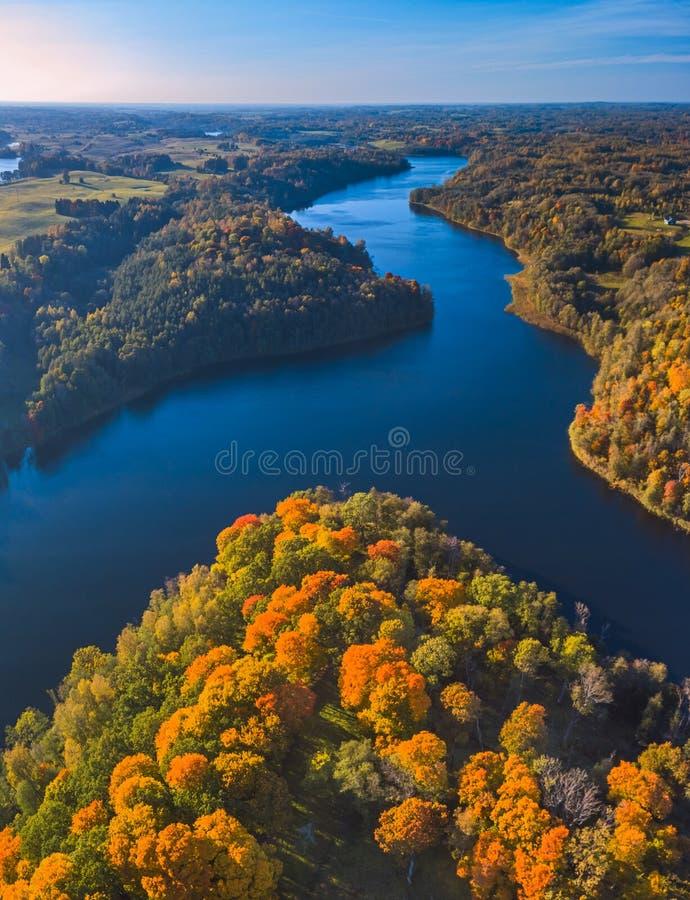 Ansicht von bunten Bäumen bei Dubingiai während des Herbstes lizenzfreies stockfoto