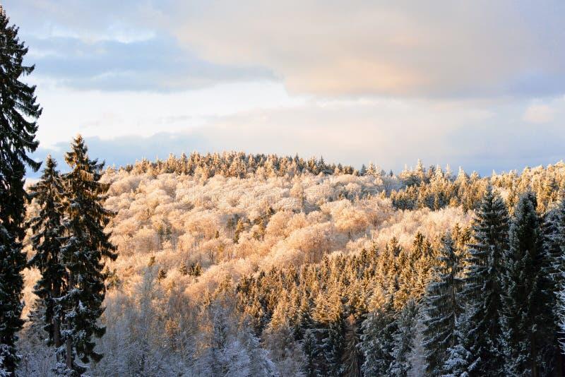 Ansicht von den deutschen odenwald Gebirgsspitzen umfasst im Schnee an einem sonnigen Wintertag lizenzfreies stockfoto