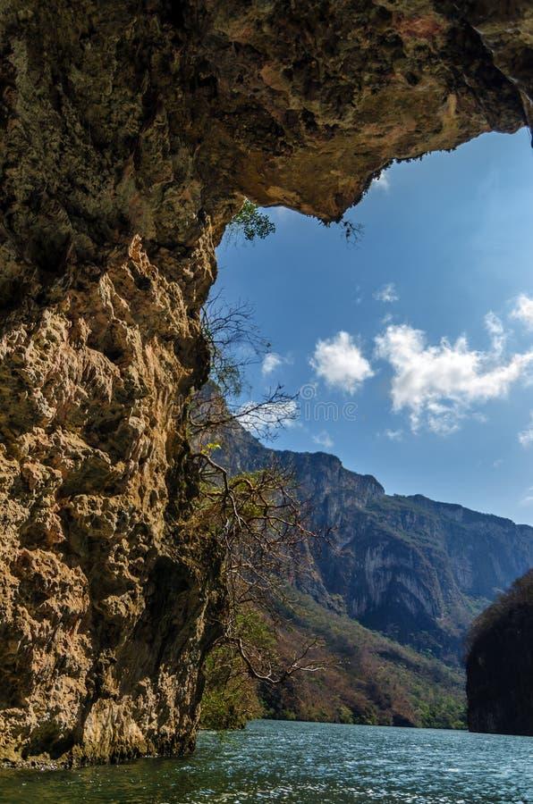 Ansicht von der Höhle lizenzfreie stockbilder