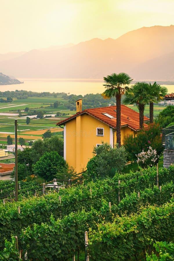 Ansicht von der ländlichen Süd-Schweiz mit Häusern, Bauernhöfen, Weinbergen, Alpenbergen und See Maggiore stockbilder