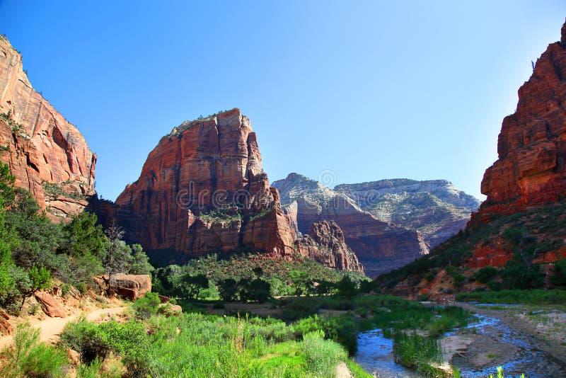 Ansicht von der Schlucht übersehen in Zion National Park lizenzfreie stockfotos