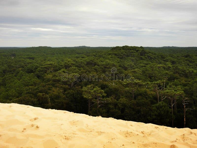 Ansicht von der Spitze der Düne von Pilat, Frankreich lizenzfreie stockfotos