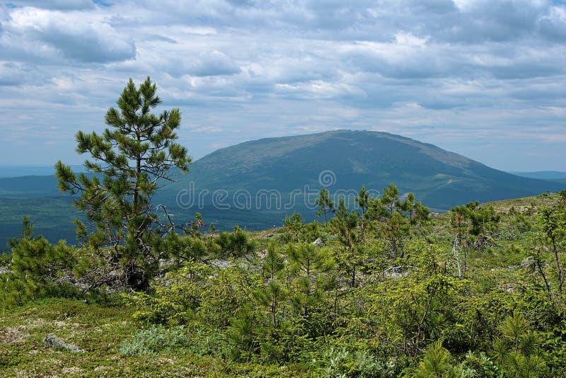 Ansicht von drittem Bugor-Berg auf Kosvinsky-Felsen-Berg lizenzfreies stockbild