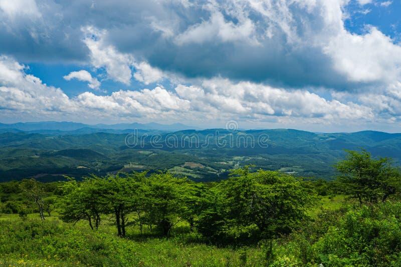 Ansicht von einer Bergwiese auf Spitzen-Whitetop-Berg, Grayson County, Virginia, USA lizenzfreies stockbild