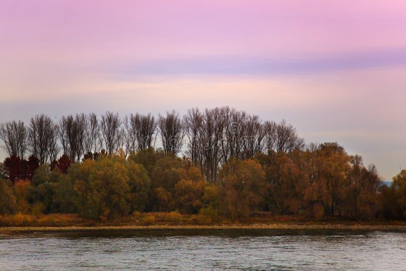 Ansicht von Fluss Rhein nahe Speyer Deutschland lizenzfreie stockfotos