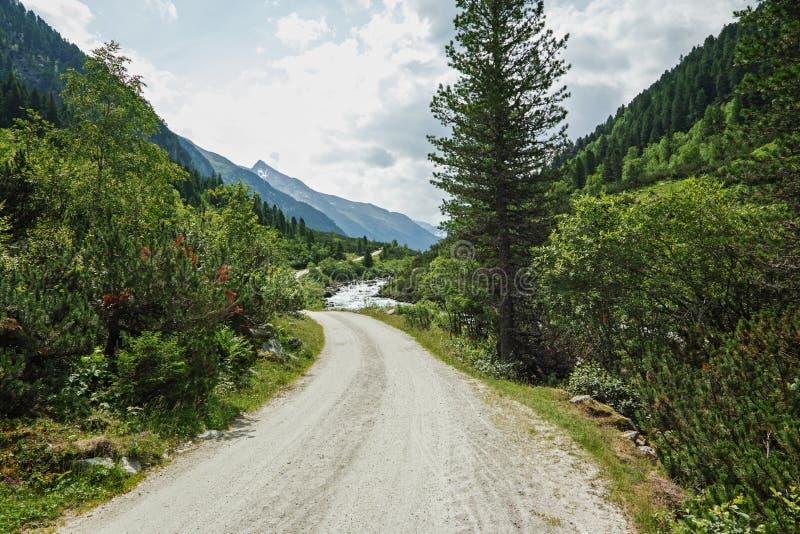 Ansicht von Gebirgsmassiv Catinaccio Rosengarten vom Latemar-Berg Dolomit, Italien lizenzfreie stockbilder